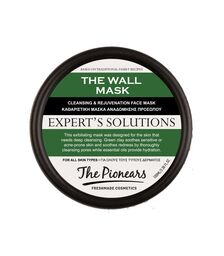 THE PIONEARS THE WALL MASK